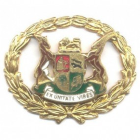 SAP Warrant Officer Gilt Rank 1964 - 1995